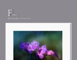 疏影摇紫(原创)