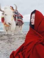 千万别死在去西藏的路上!