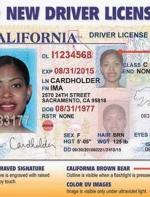"""旅游签证/无身份者将不能申请驾照!""""全真驾照""""这些规定你知道吗... ..."""