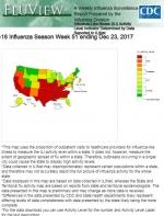 致命流感席卷全美 加州成重灾区