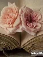 【今日美文朗读】今夜,我写下最悲伤的诗|| Flora Fang VOA英语听力