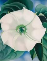 花朵不仅是植物的生殖器,也是女艺术家的!