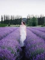 紫色情迷!长岛薰衣草庄园第二批薰衣草盛放!