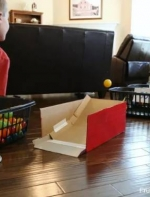 不买昂贵玩具,美国爸爸做做手工就完成了逗孩子大法