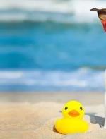 加拿大人平均带薪假期19天 你今年休了几天?