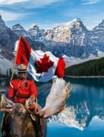 加拿大这些法律不知道 分分钟被警察罚款!