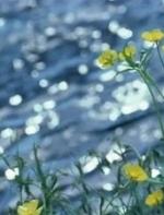 深情岁月:方唱《清明时节雨纷纷》朗诵  方卫