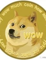 当年只是嘲讽比特币的Doge币,现在居然市值16亿美元,这一路厉害了 ...