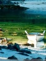 加拿大水彩:人来人走 色彩依旧