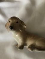 丹麦的小狗