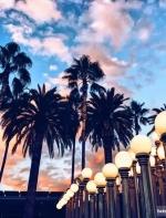 网友实拍分享|如何在LA这些博物馆拍出逼格满满的照片!