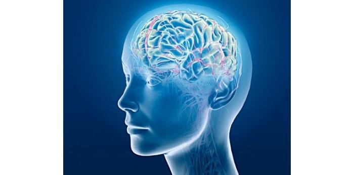 科学家发现 空气污染颗粒入侵人脑致病 怀疑可能为早老性痴呆的罪魁祸首 ... ...
