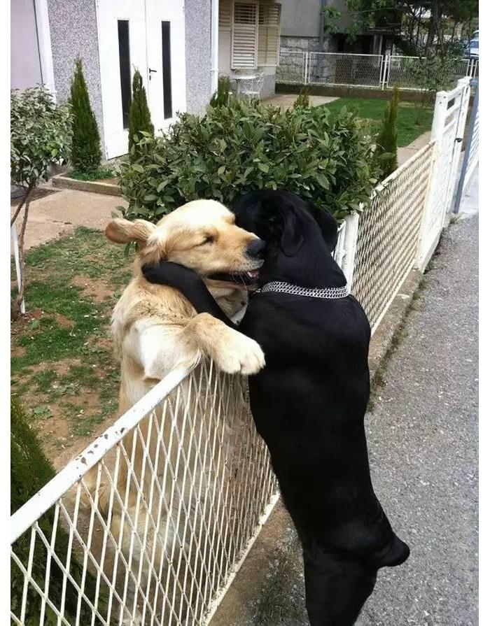 亲爱的,想你了,咱抱抱~